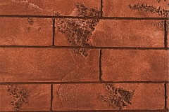 Thravertine_red_bricks