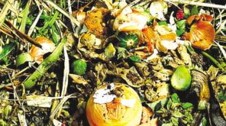 Регламентират критериите за третиране на биоотпадъци