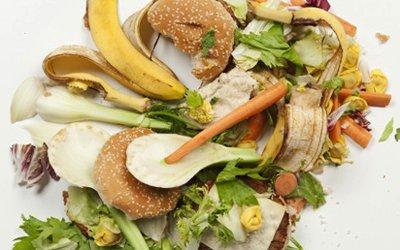 Произвеждат биогаз и електричество от изхвърлена храна