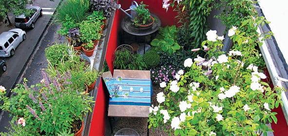 20-Terrace-Gardening1