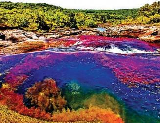 Каньо Кристалес – водна приказка от цветове