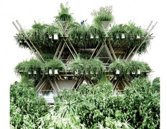 """Бамбукова гора """"поглъща"""" Китай"""