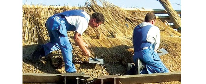 Подобни материали отдавна са доказали положителния ефект върху околната среда