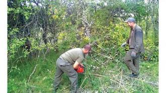 Горски служители разчистват от растителност близо 60 км от граничната зона със съседна Македония