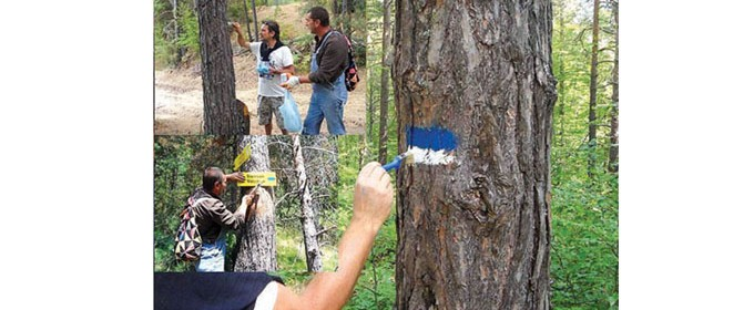 Започват проверки на състоянието на планинските маршрути и туристическата маркировка