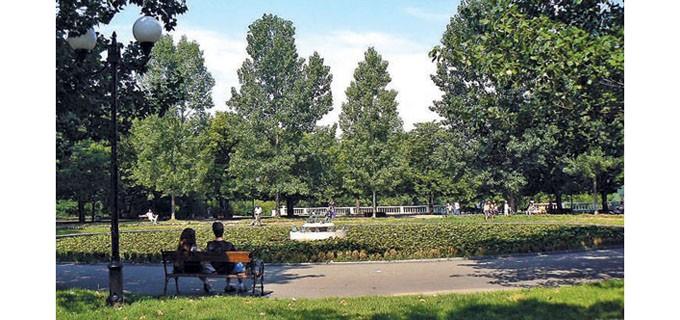 Тръгна разработката на Плана за зелен град на София