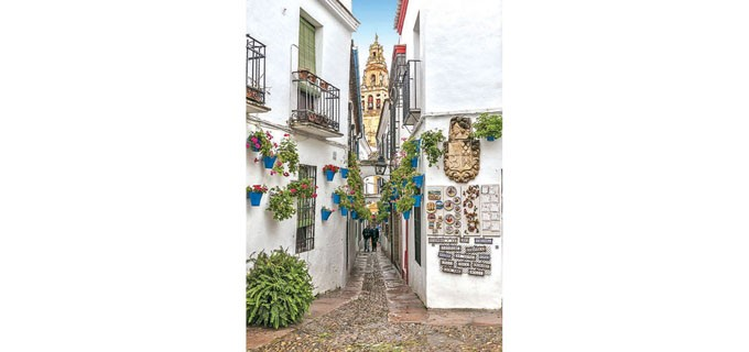 В КОРДОБА  Разположена в андалуския град Кордоба, Calleja de las Flores е тясна улица, която се влива в площад. Със своите цветя и бели стени очарователната испанска улица е много типична за региона и вдъхва невероятна романтика.